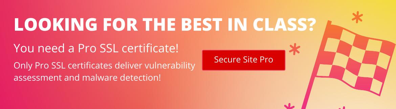 Secure Site Pro